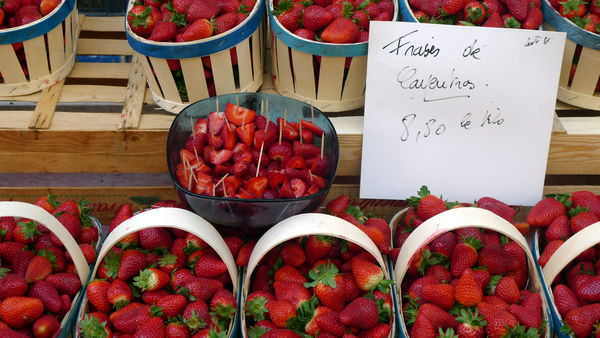 Erdbeeren aus Carpentras am Markt in Orange.