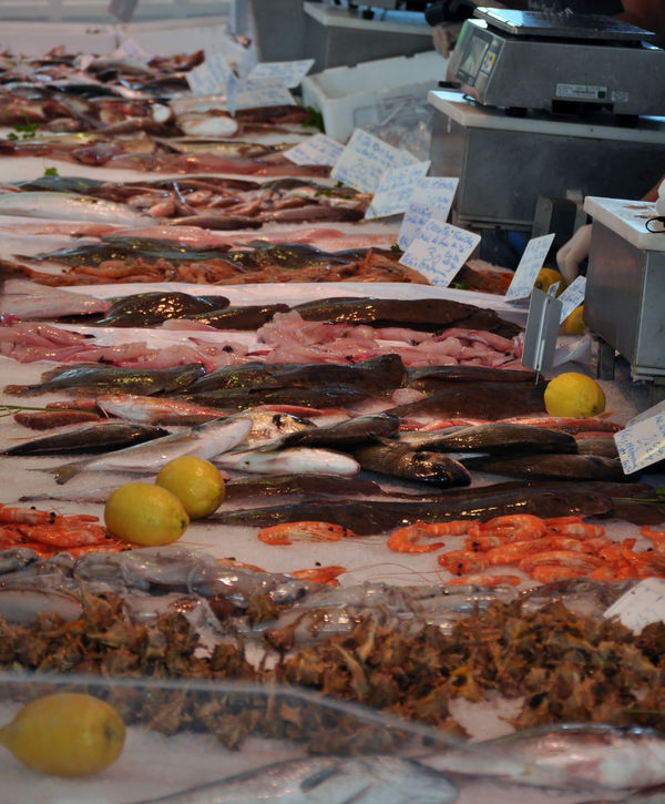 Fischtheke am Markt in Aigues-Mortes